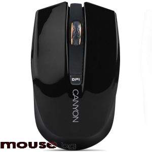 Мишка CANYON CNS-CMSW5B Wireless