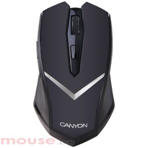 Мишка CANYON CNE-CMSW3 Wireless