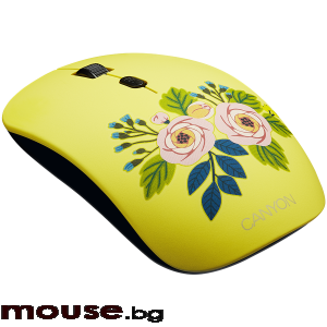 Мишка CANYON 2.4GHz wireless Optical Mouse with 4 buttons